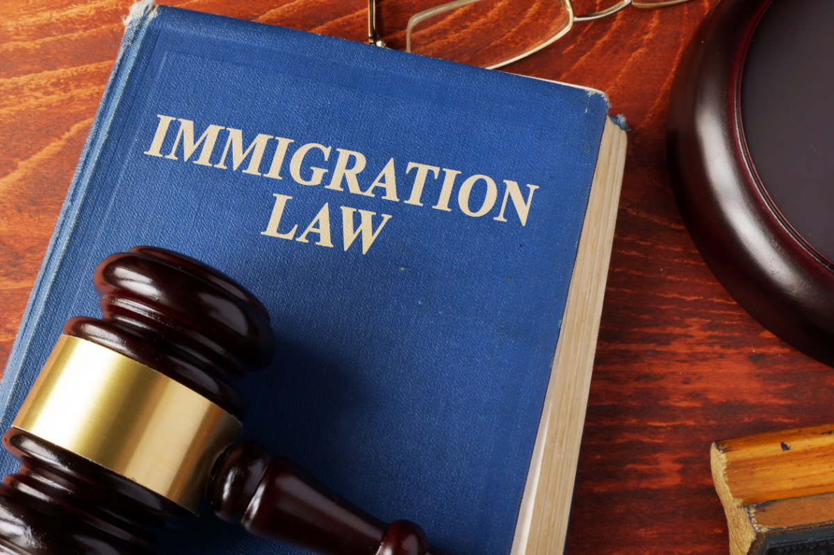 Immigration Law book and judge's gavel